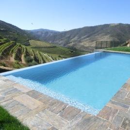 Piscina com vista sobre a vinha