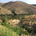 Vista sobre o rio