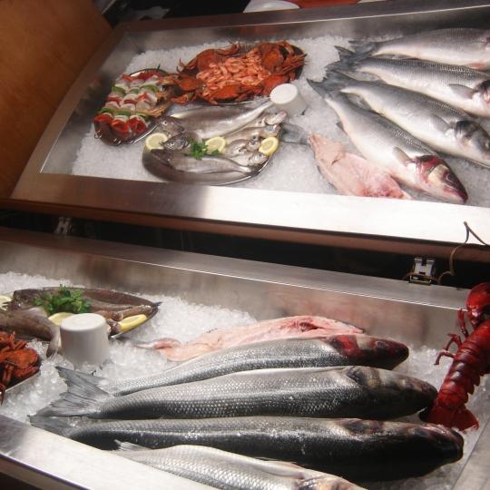 Escaparte de Peixe e Marisco Frescos