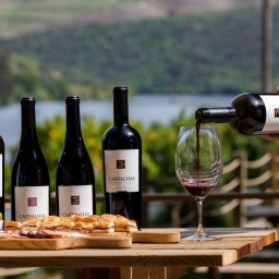 Real Companhia Velha inaugura 'Carvalhas Terrace' no Douro