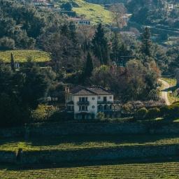 A&D Wines abre ponto de Enoturismo na Quinta de Santa Teresa