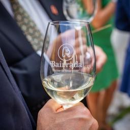 Bairrada conquista 11 prémios em concurso nacional de vinhos.
