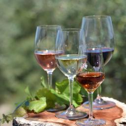 Vinhos da Península de Setúbal em sua casa