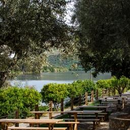 Quinta das Carvalhas reabre enoturismo e aposta no privilegiado terraço sobre o rio Douro