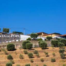 Enoturismo no Douro – Quinta do Pôpa
