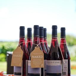 Vicentino Pinot Noir Naked: o novo tinto da Costa Vicentina