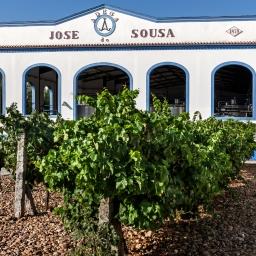 Monte da Ribeira: a nova marca de vinhos da Adega José de Sousa